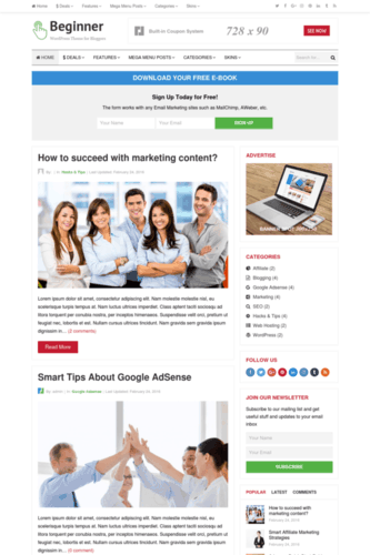 High CTR AdSense WordPress theme for niche sites