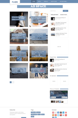 flick Google Adsense friendly WordPress theme for media sites