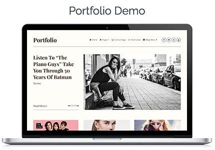 portfolio layout of clean theme