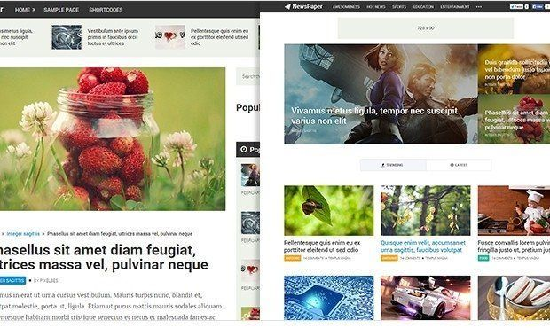 MTS Newspaper Best WordPress AdSense Friendly Theme With High CTR ad slots