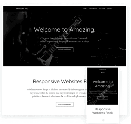Parallax Pro Theme best WordPress blog theme