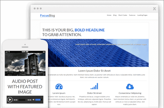 Focusblog theme: Fast loading blog theme for bloggers (with landing page)