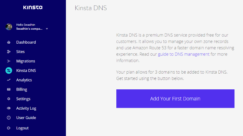 kinsta premium DNS review